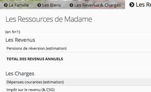 Capture d'écran du tableau présentant les revenus et charges du survivant